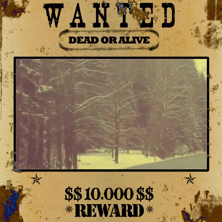 Sepia Wild West Theme Wanted Poster Pack Look Sample