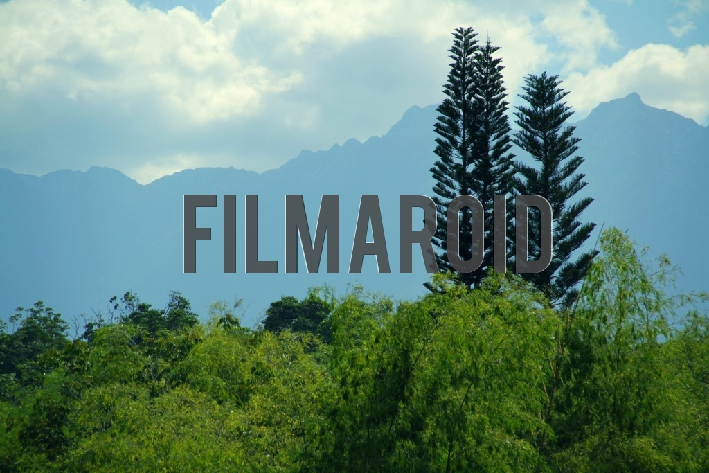 A section of the Andean mountains of the Farallones de Cali Colombia framed by tall bamboo trees