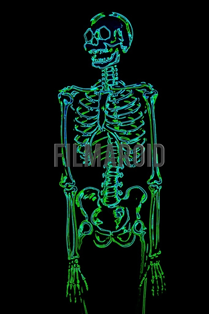 Top body view or american shot of a human skeleton with arms resting and a colorful neon effect against a pitch black background
