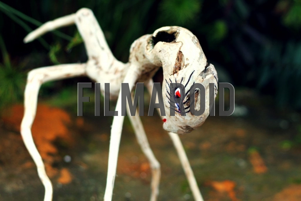 A wooden ant sculpture carved by naif artist Gerardo Homero Chito Ruano from Colombia