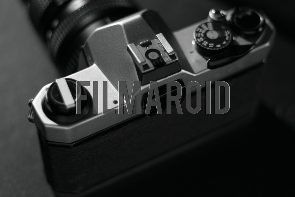 Back view of a vintage SLR camera in black and white