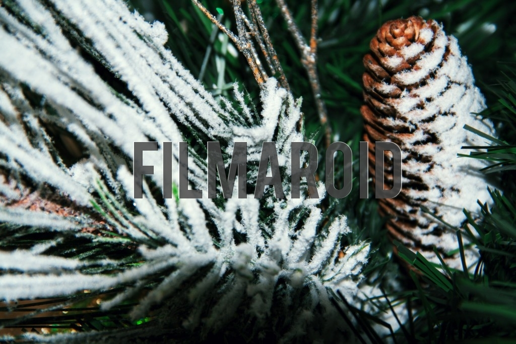 A pine cone Christmas tree ornament covered by a thin layer of snow