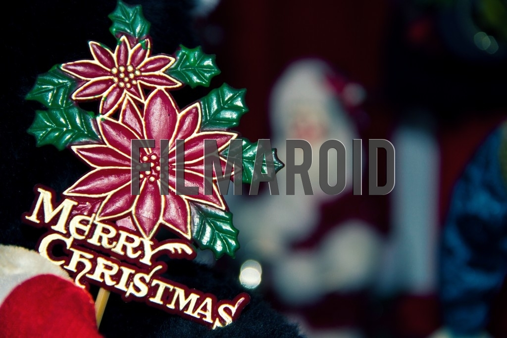 A Merry Christmas sign with flowers and santa in the background
