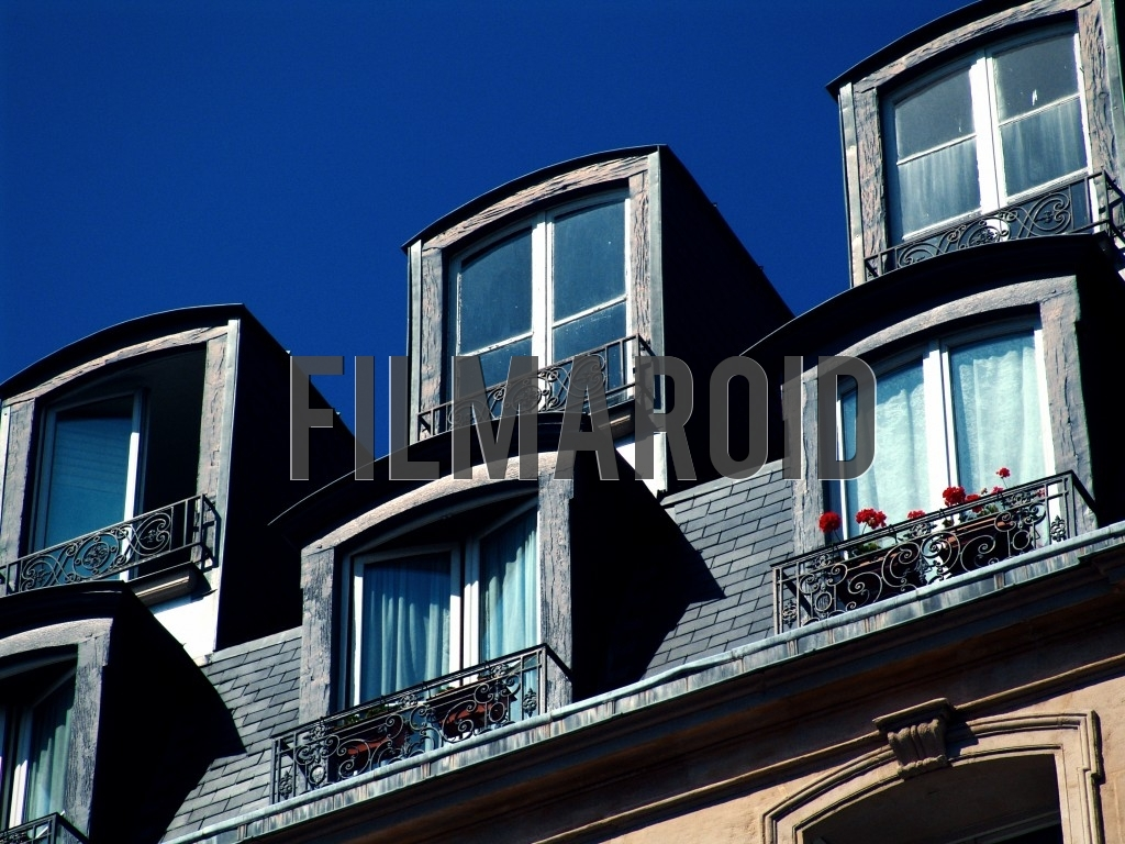 A set of parisian rooftop windows with red flowers and captured during one summer afternoon in the capital of France
