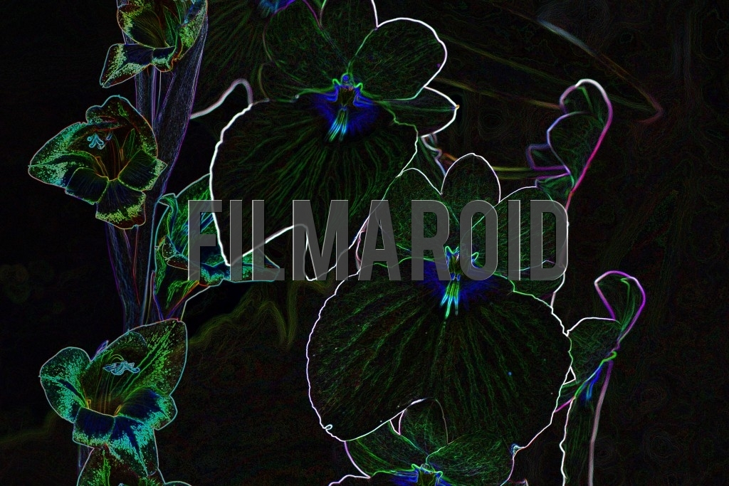 Artistic colorful floral background with glowing effect - A beautiful and abstract floral background of exotic and tropical flowers with a glowing effect