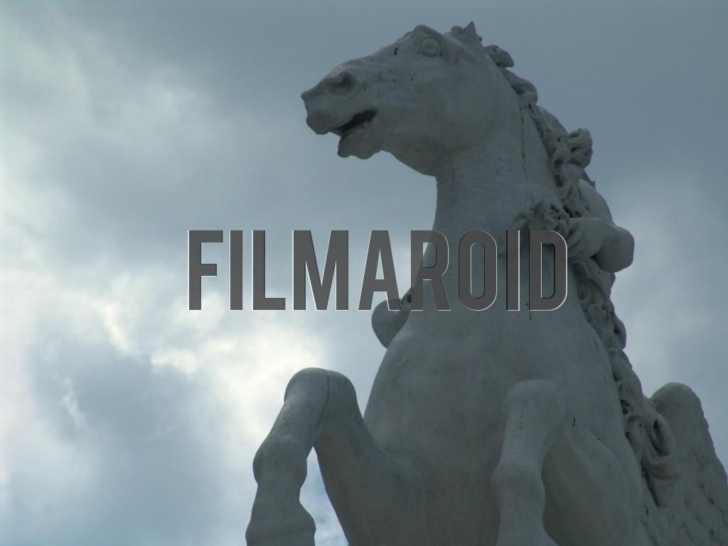 Close up of the Equestrian Statue of Louis XV present in Place de la Concorde in Paris