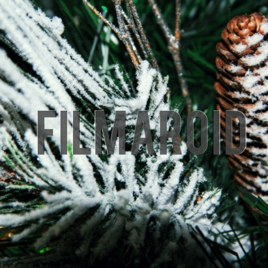 Christmas season pine cone ornament - A collection of stock photos covering different Holidays