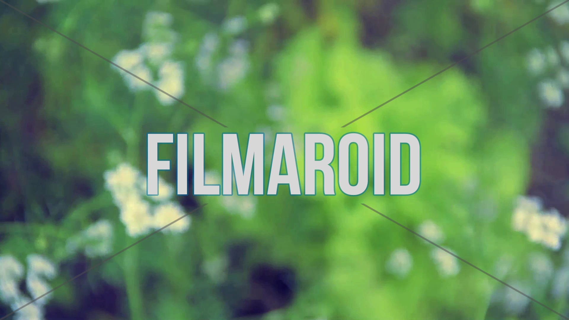 Fennel flowers and lettuce organic field crops - A collection of stock footage about Food